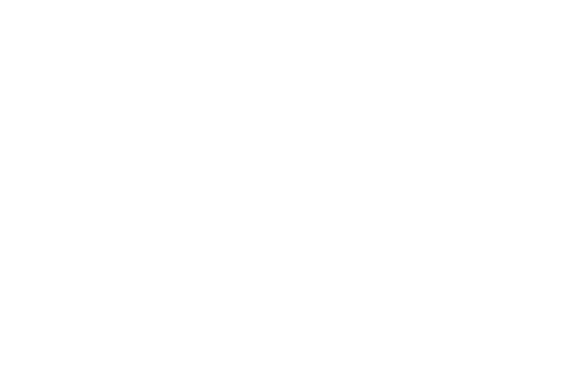ROLLING PIN Convention Austria